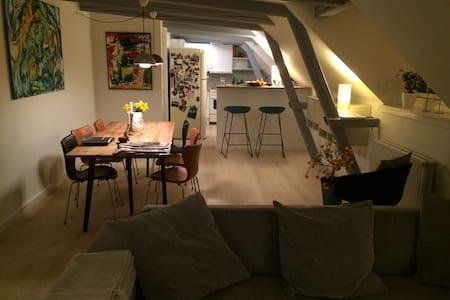 Luxurious loft apartment  - Copenaghen