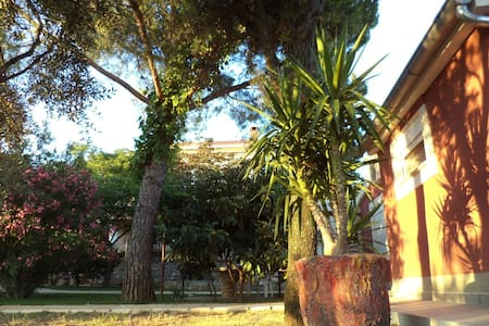 Holiday home Lolinka - Bibinje