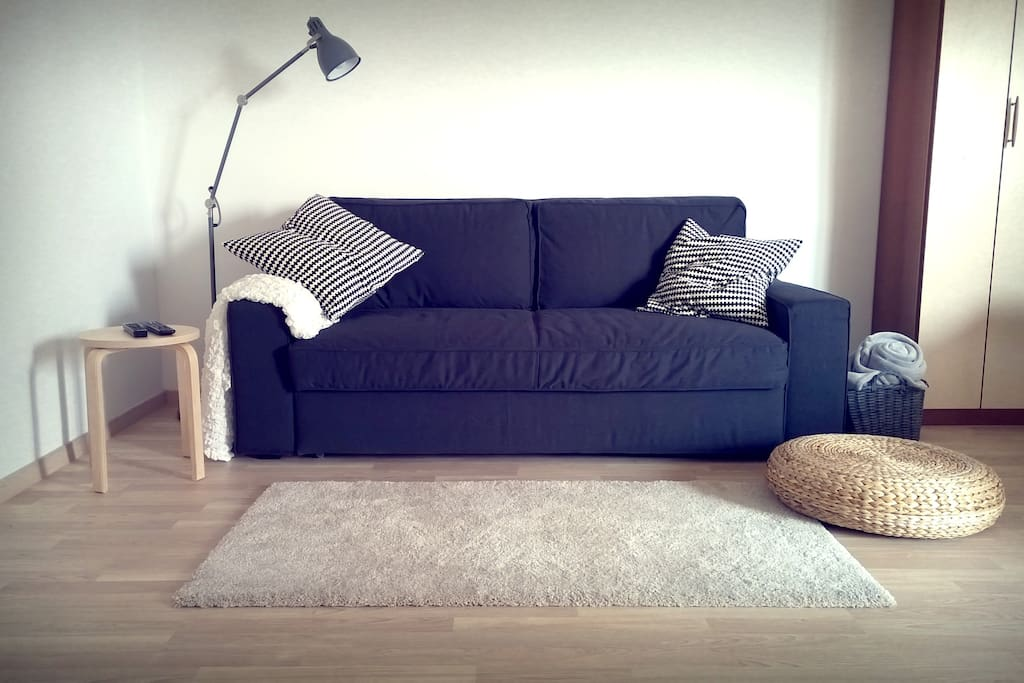 Pull out sofa (pulled out it turns into bed 140X200)