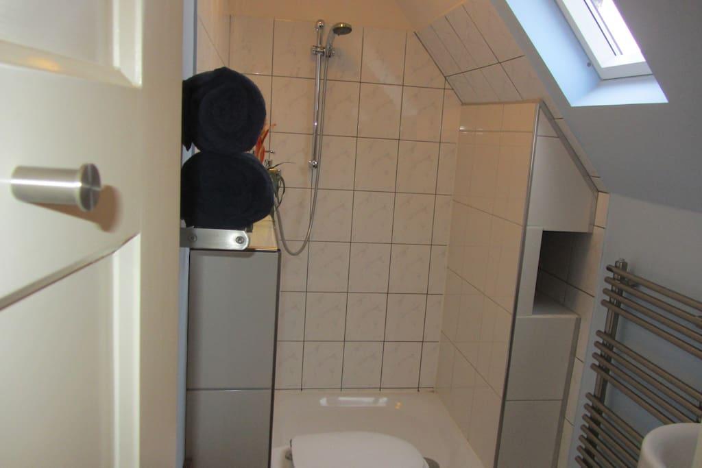 Badkamer met douche, toilet en wastafel.