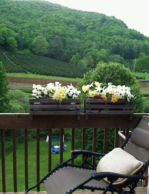 Step out from your bedroom to patio-deck and view.