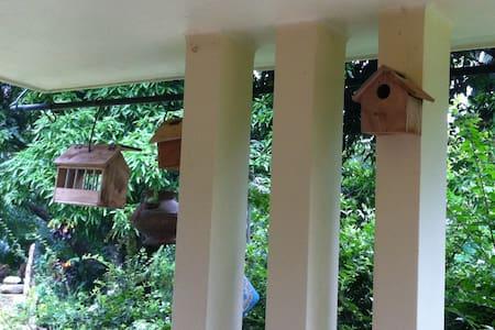 Eco Garden Homestay