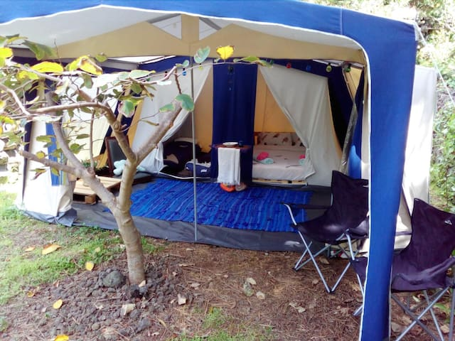 AbbyVille EcoCamping - Family Forest Tent
