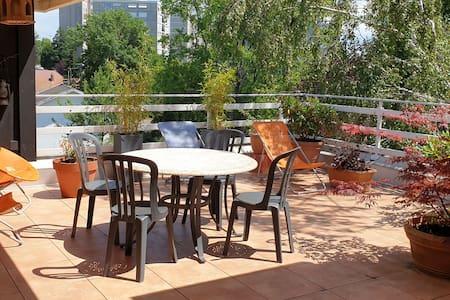 Appartement spacieux climatisé et grande terrasse