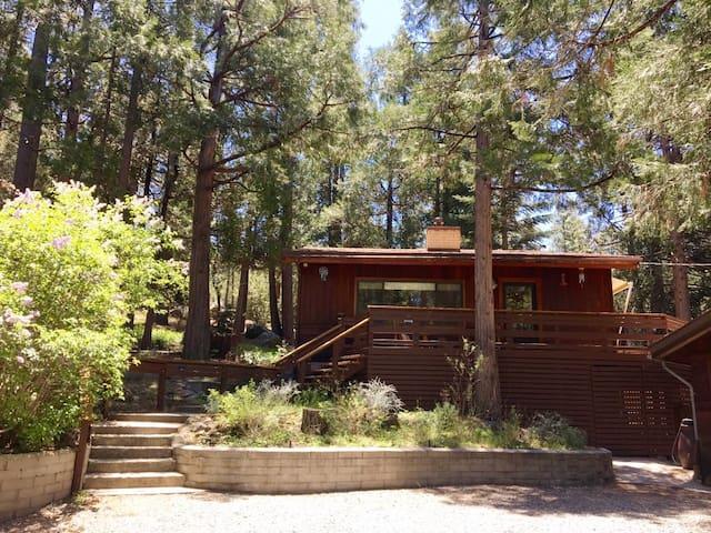 Zen Mid Century Cabin