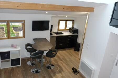Petit loft avec mezzanine - Dijon