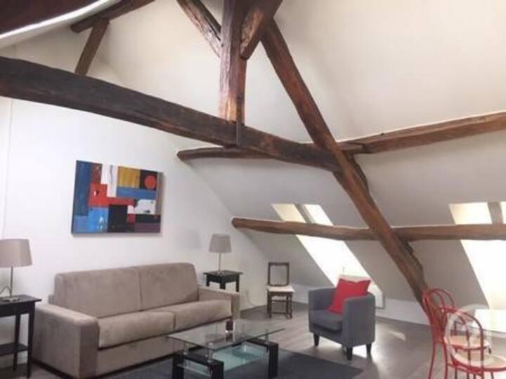 Large Loft Studio Flat