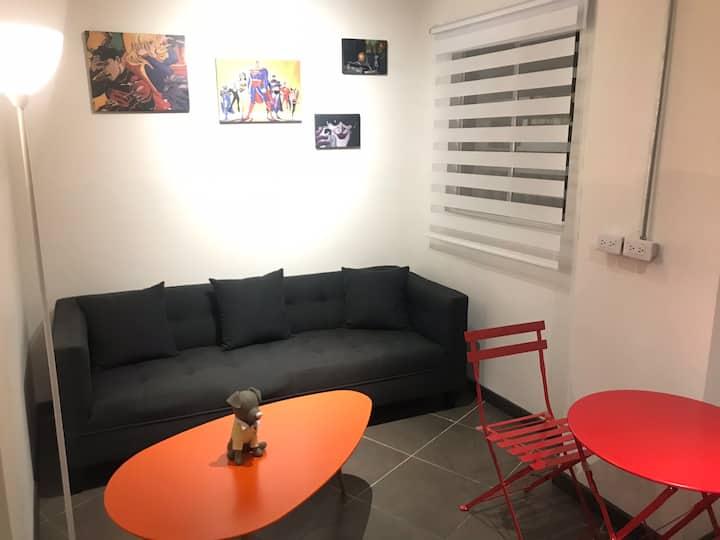 Casa loft Chapinero alto bogota apartamento 101