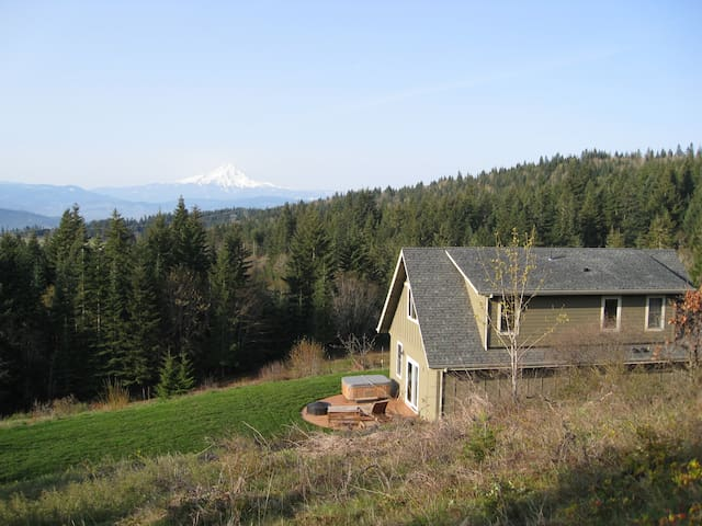 View of Mt. Hood, Private, Pet OK - White Salmon - House