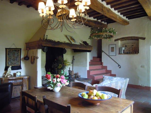 Chianti Traditional Country Villa - San Casciano In Val di Pesa - House
