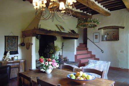Chianti Traditional Country Villa - San Casciano In Val di Pesa