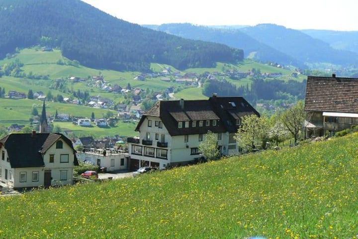 FeWo mit einzigartige Aussicht über Baiersbronn