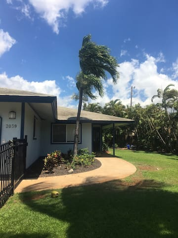 Your One Stop to Paradise! - Kihei - House