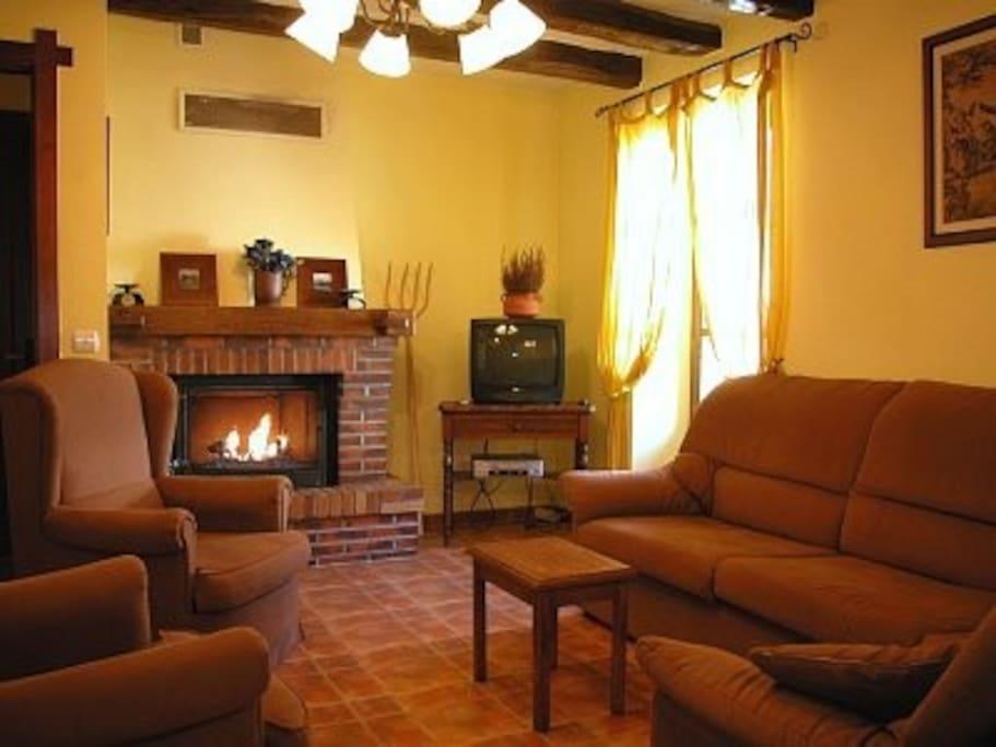 Sala de estar.Disfruta de la tertulia delante de la chimenea