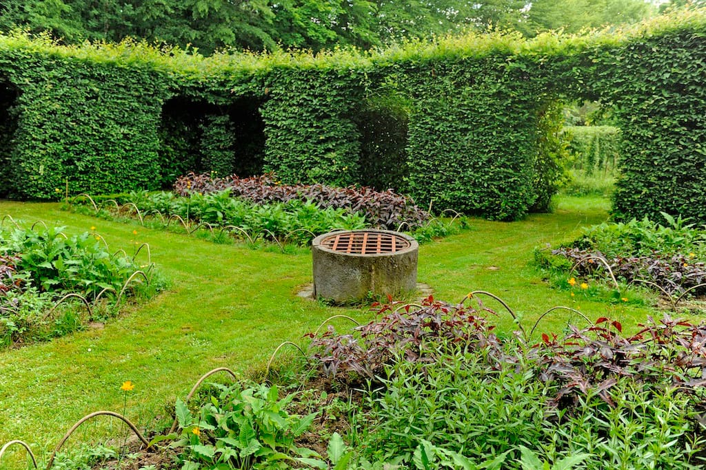 Labyrinthe de verdure