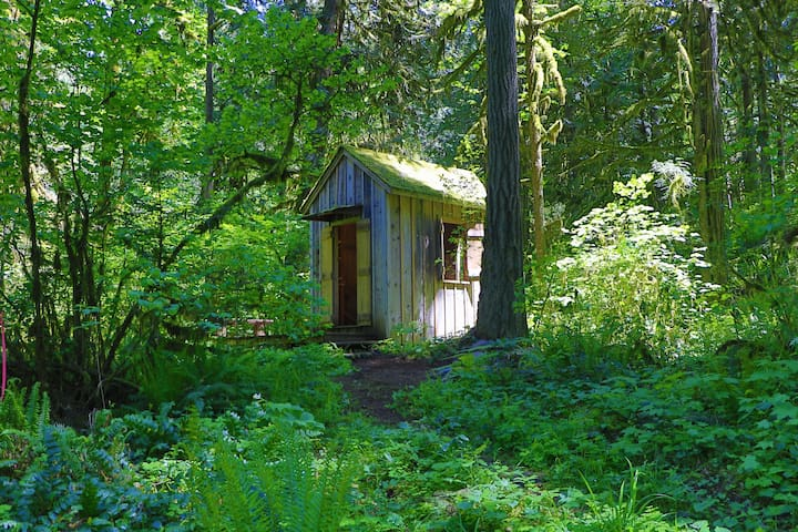 Secluded Glamping Cabin Three aka 'White Rabbit'