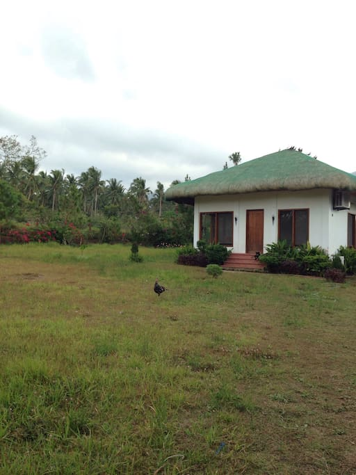2 hectare property with one Filipino style home.