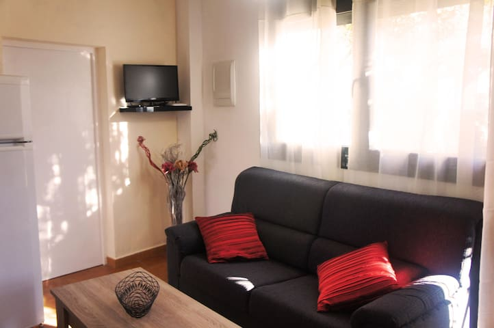 Apartament rural nou