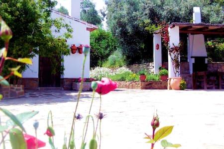 Casa rural , 8 personas , centro Andalucia - Villa