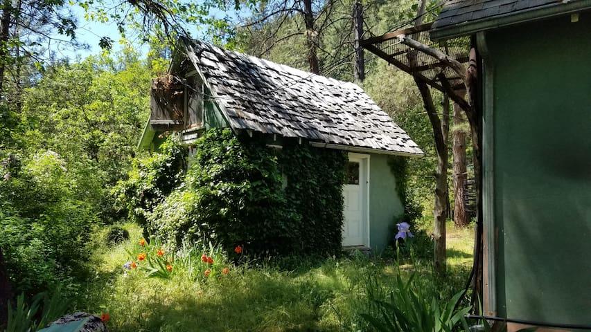 Ivy Guesthouse- Off Grid Creekside, Applegate Lake