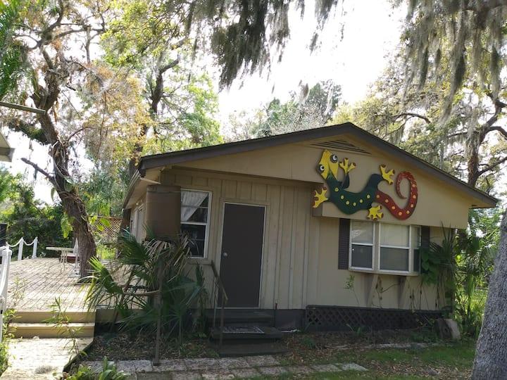 The 'Gecko House'
