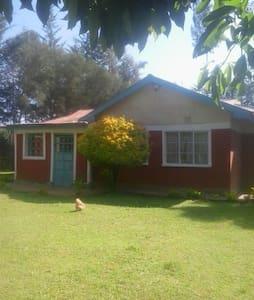 Derryk & Shish Quiet County Home