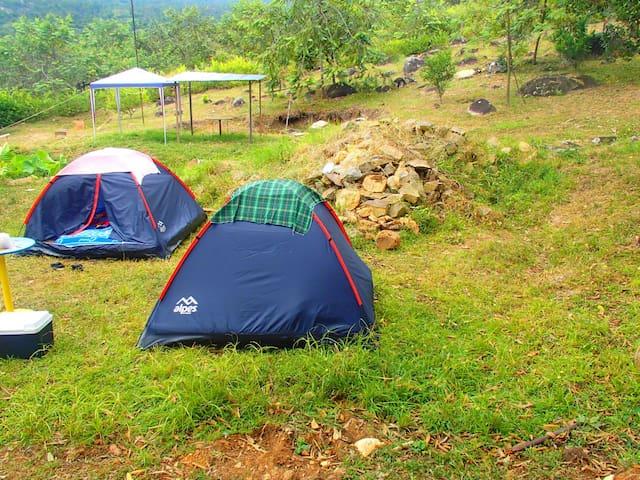 Camping y pesca en medio de la naturaleza