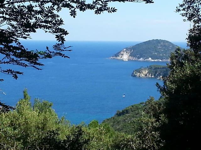 Charming Villa, Elba Island Tuscany - Procchio isola d'Elba - House