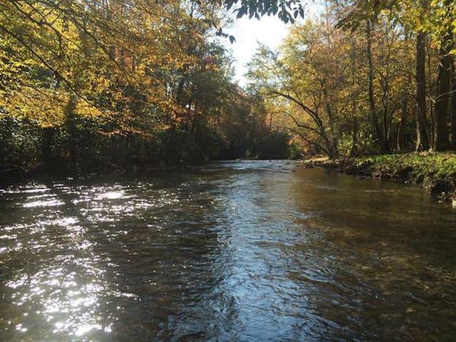 Cabin on Fires Creek - Hayesville - Zomerhuis/Cottage