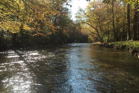 Cabin on Fires Creek - Hayesville - Cottage
