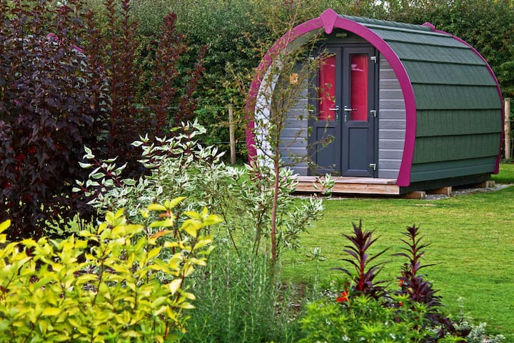 Eco-Pod, York Holiday & Cycle Stop - York - Chata