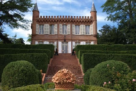 Special Offer - amazing castle - Montesquieu-Volvestre - Casa