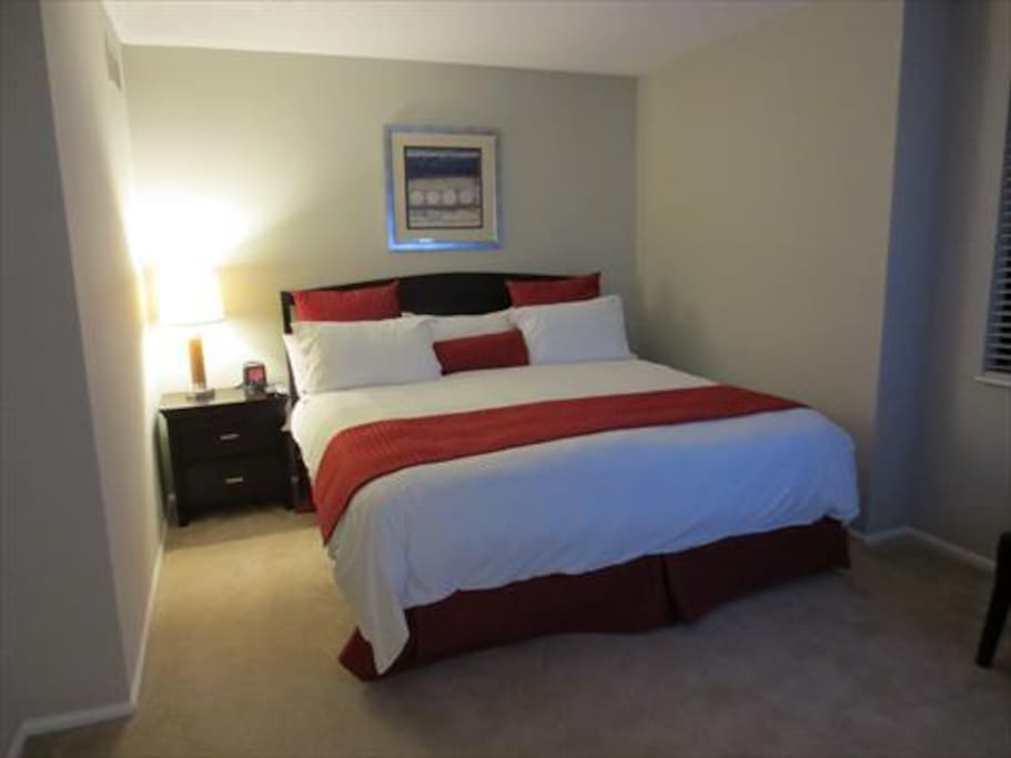 Spacious second bedroom with queen size bed and large closet
