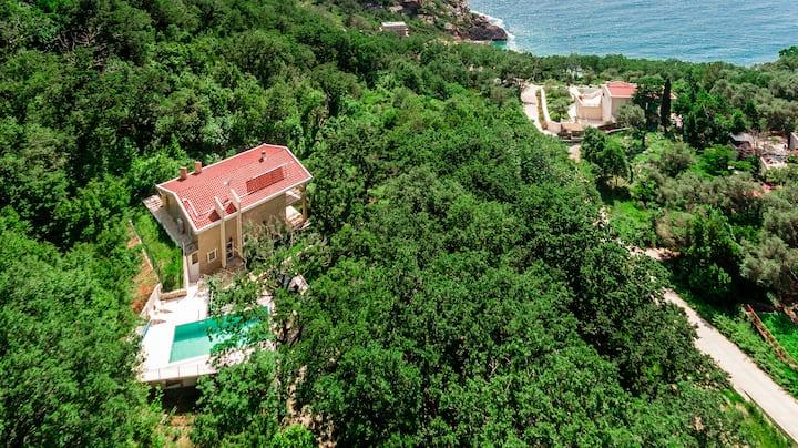 Villa Delphinium