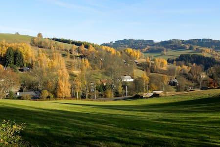 apartmán na rozhraní Jizerských hor a Krkonoš - Zlatá Olešnice