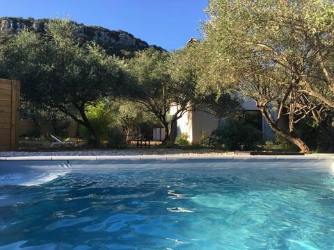 Kunstnerens atelier, pool, vingård og oliventræer