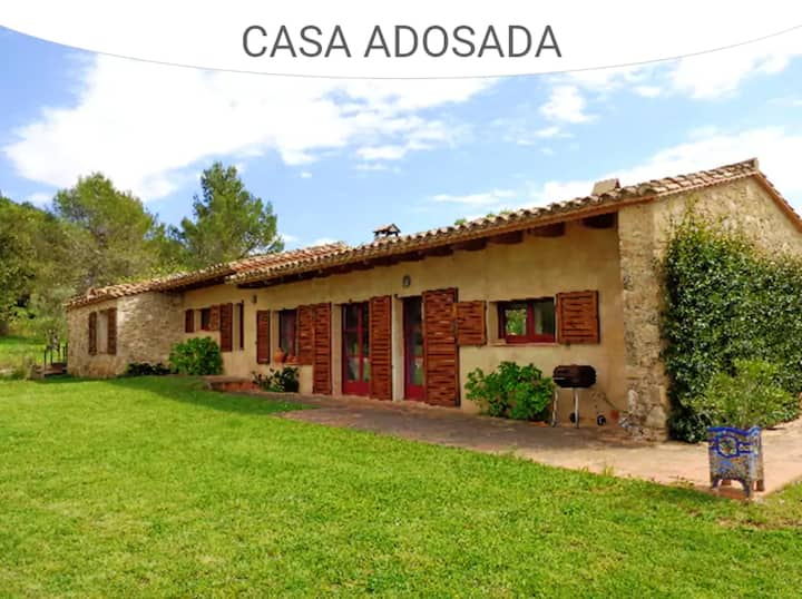 House with 3 bedrooms in SAUS-CAMALLERA, with private pool, enclosed garden and WiFi - 14 km from the beach