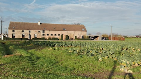 Unique accommodation at Mechelen