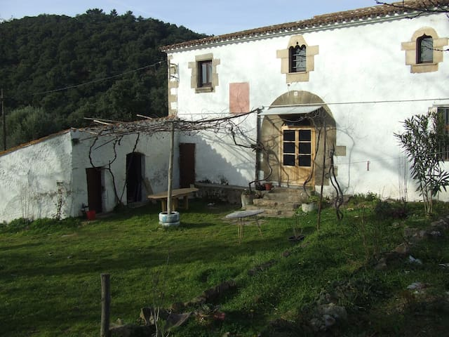 Countryside house of the s.XII - Sant Feliu de Buixalleu - Hus