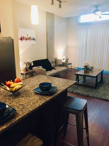 Luxury 1x1 Apt, Private Access, North UT/Hyde Park