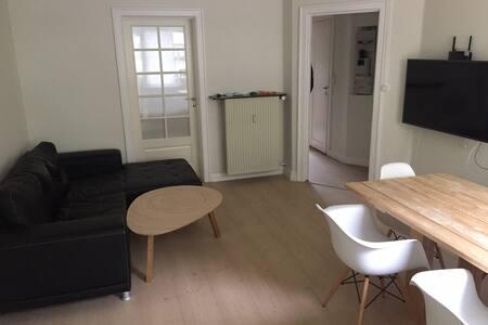 Hyggelig lejlighed tæt på centrum. - København - Apartment