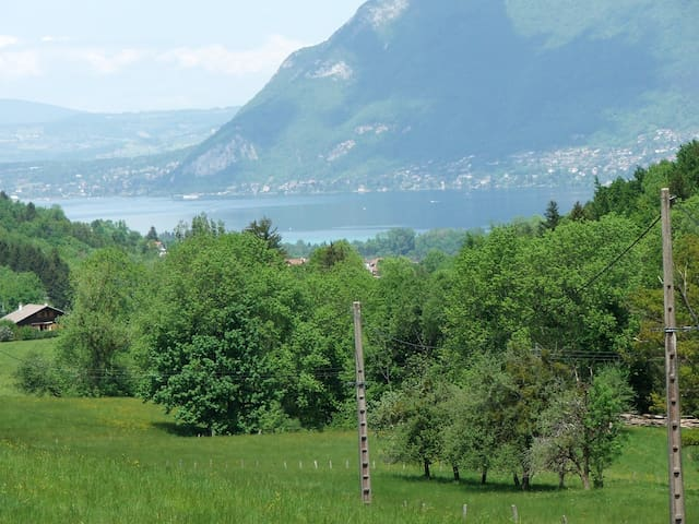 Lac d'ANNECY- les Grobbes