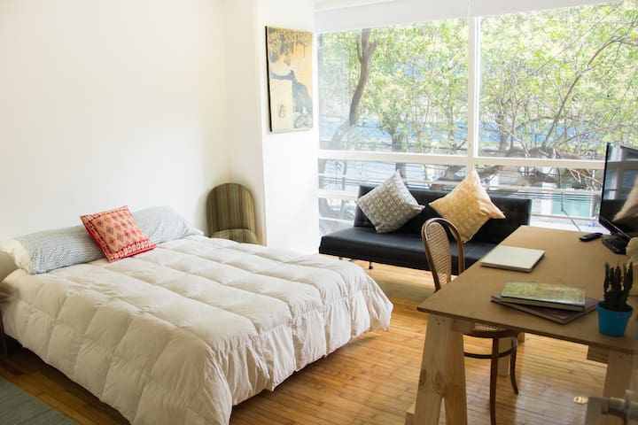 Comfty Room in the Heart of Condesa