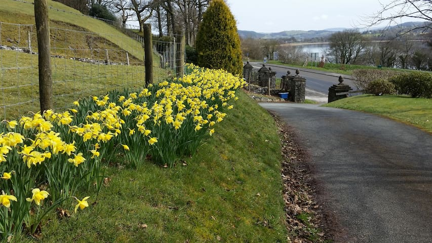 Spring time along the drive and entrance gate posts.