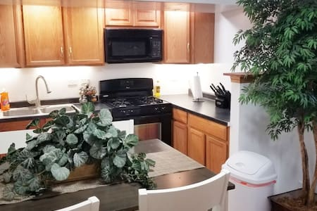 Cozy Garden Suite 1 BDRM Southwest Suburbs Chicago