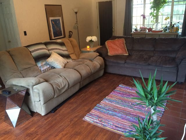 Comfy Couch in The Heart of Orlando - Orlando - Maison
