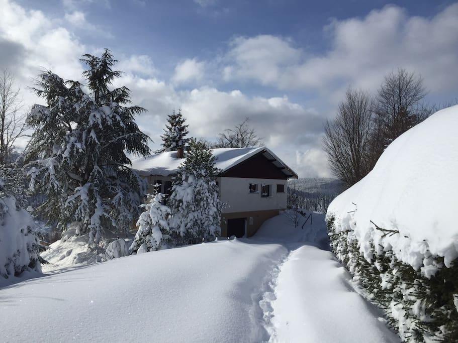 la magie de la neige fraîche au Grand Valtin