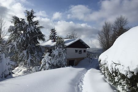 Charming chalet with amazing view near Gerardmer - Hytte (i sveitsisk stil)