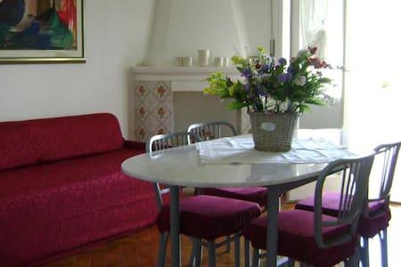 Il Ciclamino - Alberobello - Apartmen