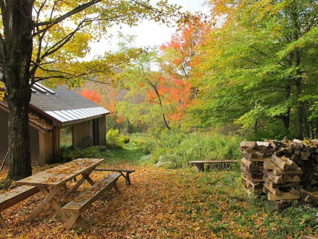 Catskills Forest Artist Studio